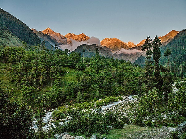 chatpal-Green-Kashmir-Travels